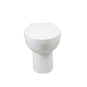 Back To Wall Toilet--CB9901