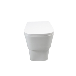 Back To Wall Toilet--CB9903